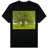 The Oak of Flagey, Called Vercingetorix Shirts