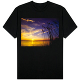 Sunset on the Barnegat Bay and Sea Oats Shirts