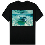 Southern Stingrays Swimming at Stingray City Shirts