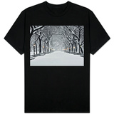 Central Park in Winter T-shirts