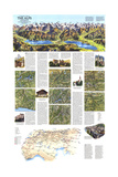 1985 A Traveler's Map of the Alps Posters