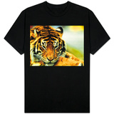 A Relaxed Tiger at London Zoo, April 1991 T-Shirt