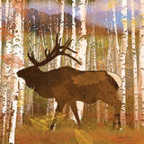 Elk Prints by Lynnea Washburn