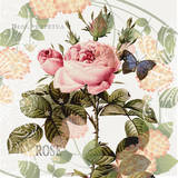 Vintage Roses Poster by Denise Urban