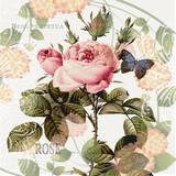 Vintage Roses Poster by Denise Urban