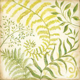 Fern Botanical I Prints by Kate McRostie