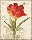 Garden View III - Red Tulip Posters by Lisa Audit