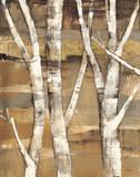 Wandering Through the Birches I Posters par Albena Hristova