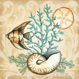 Sea Life IV Posters af Sydney Wright