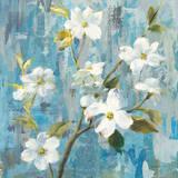 Graceful Magnolia I Art by Danhui Nai