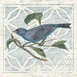 Monument Etching Tile II Blue Bird Plakater af Hugo Wild