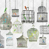 Birdcages Collage Square II Art by Maria Carluccio