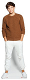 Louis Tomlinson Casual Life Size Cut Out Silhouette en carton