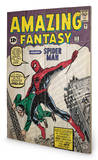 Spiderman - Amazing Fantasy Wood Sign Wood Sign