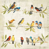 Adoration of the Magpie Music Prints by Avery Tillmon