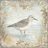 Shore Birds I Prints by Kate McRostie