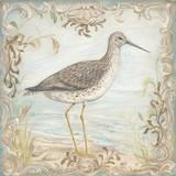 Shore Birds III Affiches par Kate McRostie