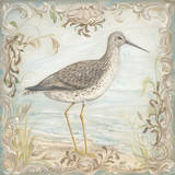 Shore Birds III Prints by Kate McRostie