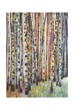 Rainbow Grove 1 Print by Norman Wyatt Jr.