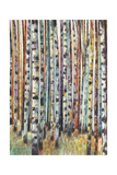 Rainbow Grove 2 Prints by Norman Wyatt Jr.