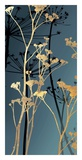 Twilight Botanicals II Prints by Aimee Wilson