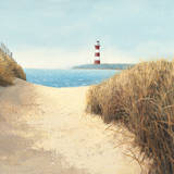 Beach Path Square Prints by James Wiens