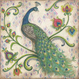 Feathered Splendor I Prints by Kate McRostie