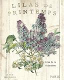 Lilas de Printemps Posters par Sue Schlabach