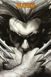Marvel Extreme - Wolverine Claws Prints