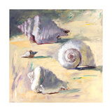 Shells I Giclee Print by Dale Payson