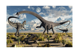 A Deadly Confrontation Between a Diplodocus and a Pair of Allosaurus Poster