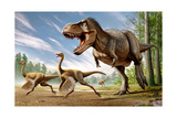 Tyrannosaurus Rex Attacking Two Struthiomimus Dinosaurs Posters