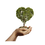 Woman's Hands Holding Soil with a Tree Heart Shaped Posters