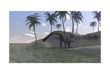 Large Brachiosaurus Grazing at the Water's Edge Posters