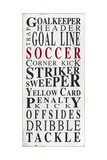 Soccer Premium Giclee Print by  Barn Owl Primitives