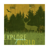 Explore Your World 5 Giclee Print by CJ Elliott