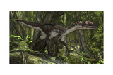 Utahraptor in a Prehistoric Forest Prints