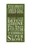 Football Giclee Print by  Barn Owl Primitives