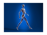 X-Ray View of a Naked Woman Walking, with Skeletal Bones Superimposed Prints
