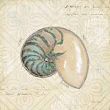 Beach Treasures III Plakat af Emily Adams