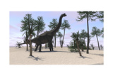 Large Brachiosaurus in a Tropical Environment Prints
