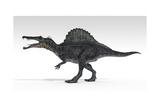 Spinosaurus Dinosaur, White Background Poster