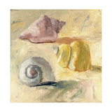 Shells II Giclee Print by Dale Payson