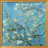 Branches d'amandier en fleurs, Saint-Rémy, 1890 Affiches par Vincent van Gogh