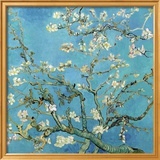 Almond Branches in Bloom, San Remy, c.1890 Art by Vincent van Gogh