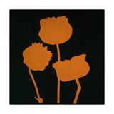Fiore Arancione Posters by Gregory Garrett
