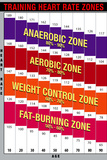 Training Heart Rate Zones Chart (Bright) Poster Posters