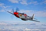 A P-51D Mustang in Flight Near Hollister, California Fotografická reprodukce