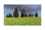 Large Brachiosaurus in an Open Field Print