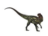Allosaurus, a Prehistoric Era Dinosaur Print